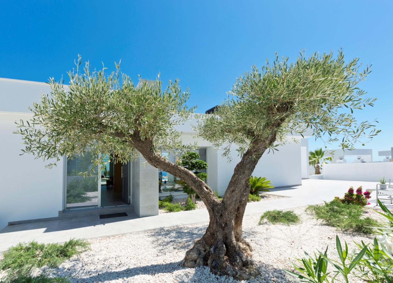 Lirios Design Cumbre del Sol moderne villa te koop ref: AL182 model ...